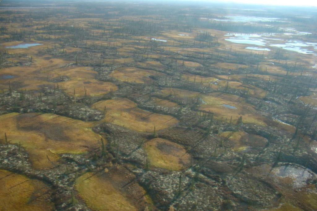 Artico: il Polo Nord si sta sciogliendo.